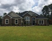 1716 Wood Stork Drive, Conway image