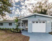 10714 Donbrese Avenue, Tampa image