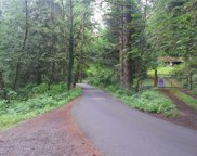 25007 SE Old Black Nugget Rd, Issaquah image