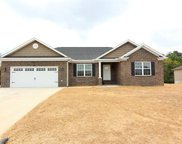 83 Culloden Moore, Jackson image