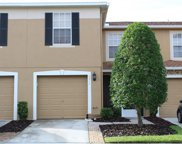 4214 Winding River Way, Land O' Lakes image