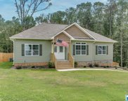 12675 Woodland Lake Rd, Mccalla image
