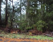 10521 100th St Ct, Anderson Island image