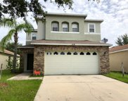 11024 Golden Silence Drive, Riverview image