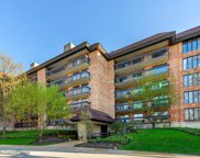 3851 Mission Hills Road Unit 309W, Northbrook image