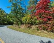 37 Winding Poplar  Road Unit #918, Black Mountain image