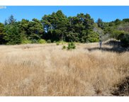 33241 OPHIR  RD, Gold Beach image