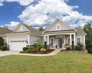 4225  Rosy Billed Court, Indian Land image