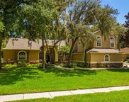 6313 Wild Orchid Drive, Lithia image