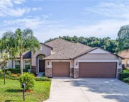 32101 Spring Meadow Ct, Sorrento image