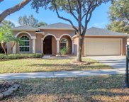 19138 Dove Creek Drive, Tampa image
