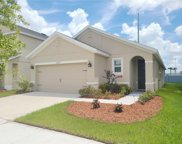 10259 Geese Trail Circle, Sun City Center image