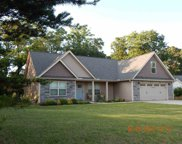 469 Bollweevil Way, Wellford image