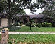 2907 Timber Knoll Drive, Valrico image
