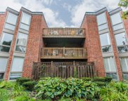 2036 North Larrabee Street Unit 8201, Chicago image