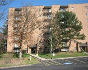6010 Lake Bluff Drive Unit 402, Tinley Park image