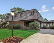 851 Valley View Drive, Downers Grove image