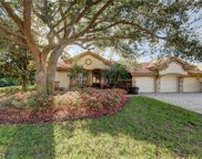 1594 Preserve Way, Clearwater image