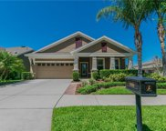 5323 Crosscourt View Drive, Lithia image