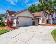 5885 Parkview Point Drive, Orlando image