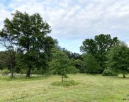13681 County Road 4113, Lindale image