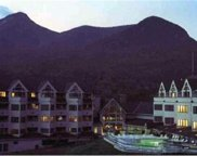 1150D LOON MOUNTAIN Road Unit #1150D, Lincoln image