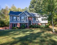 3539 Elinburg Court, Buford image