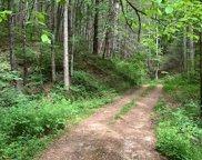 TBD Cedar Wood Drive, Franklin image
