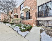 860 South Laflin Street, Chicago image