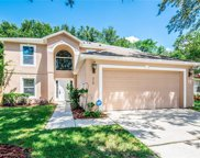 519 Dominish Estates Drive, Apopka image