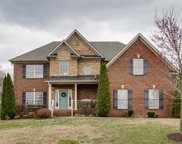 1001 Avery Trace Circle, Hendersonville image