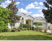 13422 Trailing Moss Drive, Dade City image