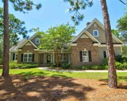 54 Bald Cypress Ct., Pawleys Island image