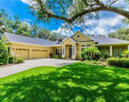 5802 Terncrest Drive, Lithia image