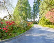 22050 136 Avenue, Maple Ridge image