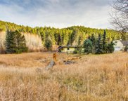 6306 South Brook Forest Road, Evergreen image