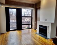 1151 West 15Th Street Unit 305, Chicago image