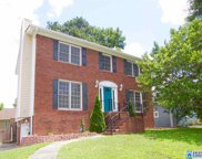 166 South Pointe Dr, Homewood image