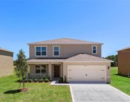 6698 Coral Berry Drive, Mount Dora image