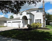 10658 Grand Riviere Drive, Tampa image