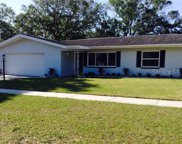 1685 Arbor Drive, Clearwater image