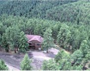 27874 Meadow View Drive, Evergreen image