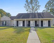 36291 The Bluffs Ave, Prairieville image