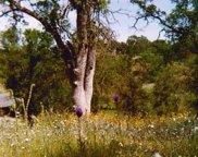 10762 Millerton, Clovis image