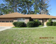798 MAPLEWOOD LN, Orange Park image