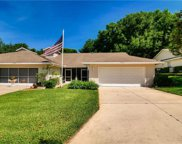 9034 Village Green Boulevard, Clermont image