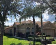14521 Mirasol Manor Court, Tampa image