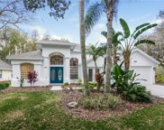 16018 Wilmington Place, Tampa image