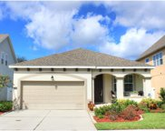 7709 S Fitzgerald Street, Tampa image