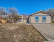 802 Little Angel Cove, San Antonio image